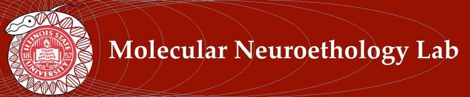 Molecular Neuroethology Lab