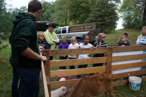 Learning all about Bacon the Micro Pig.