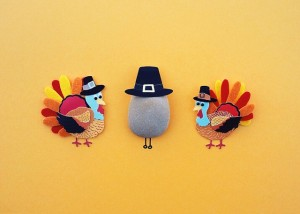 Picture from https://pixabay.com/en/thanksgiving-turkey-holiday-dinner-1801986/