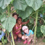 8-5-15 garden helpers