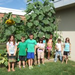 8-5-15 great garden helpers