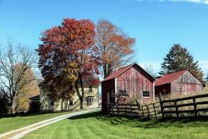 farm-1656820_640