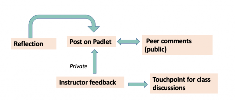 Design of the activity on Padlet
