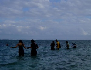 Being up close and personal with marine life in the ocean along Coral Coast