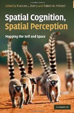 Spatial_cognition