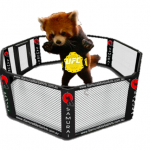 The Original MMA Champion: Red Pandas!