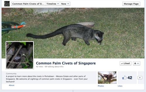 Civet FB page