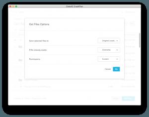 Crash plan Get Files Option window