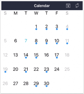 picture of new simple dot on mobile Canvas calendar