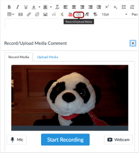A picture showing Canvas' updated options regarding HTML 5 recording into a RCE