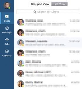 Skype Window with ID Photos