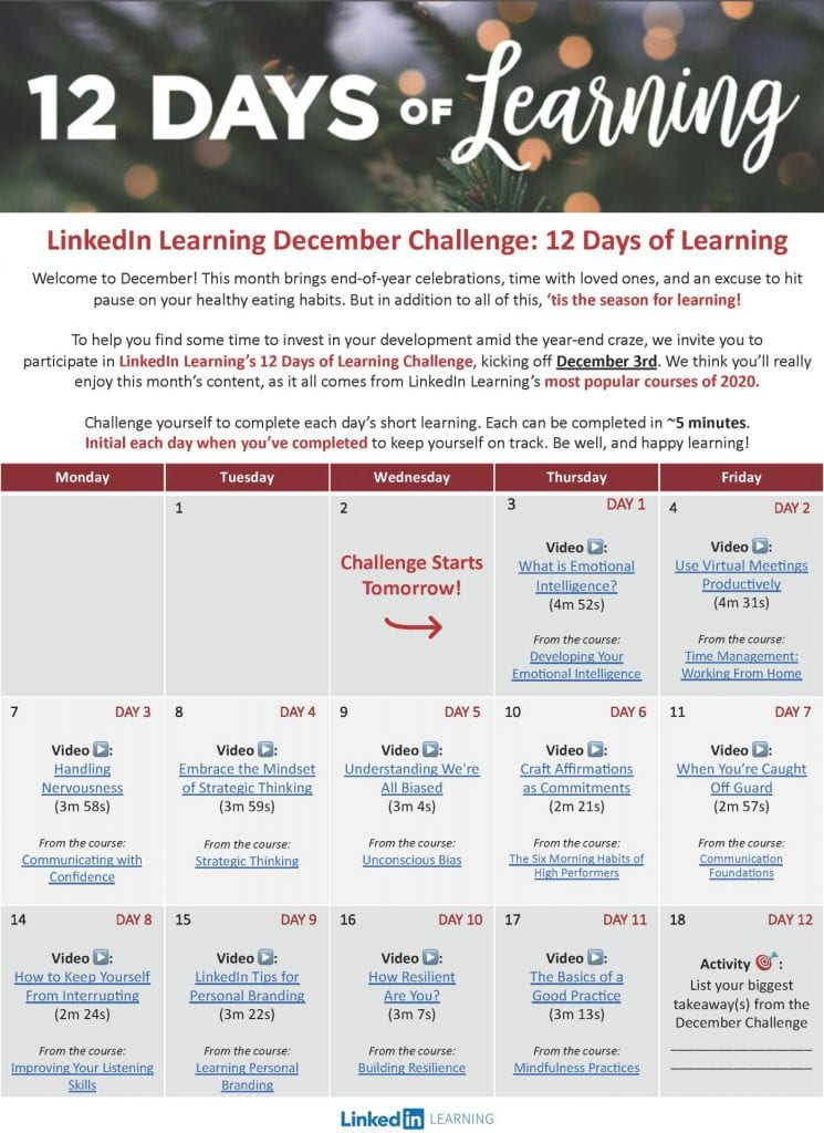 A screecshot of the 12 Days of Learning challenge PDF file.