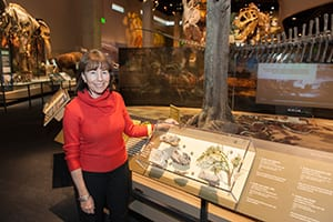Paleobotanist Bonnie Jacobs, along with Michael Polcyn, is featured in Perot Museum Carer Inspirations videos. She advised the museum on the text for the paleoenvironment.