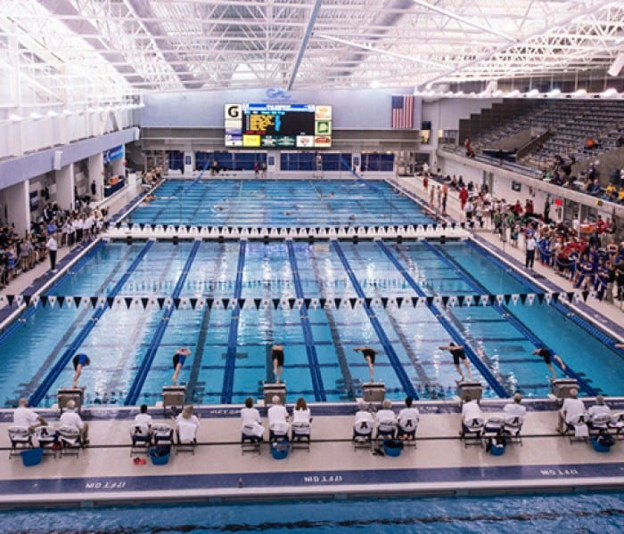 SMU Women's Swimming Heads To NCAA Championship