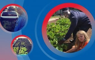 The Seedling Farms partnership will help groups in South Dallas grow fresh produce.