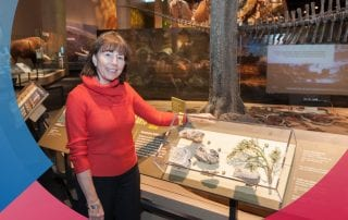 Paleobotanist Bonnie Jacobs has been named a Paleontological Society Fellow.