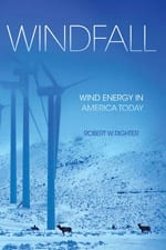 'Windfall' book cover