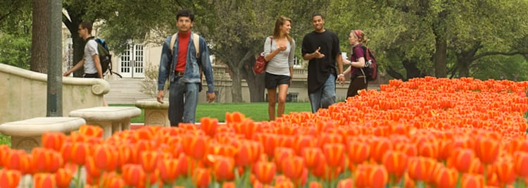 Students on the Laura Bush Promenade at SMU