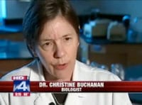 Christine Buchanan on Fox 4 News