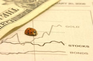 A bug in the financial system