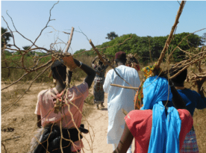 Villagers in Tintinto make the long journey back to the village carrying firewood on their heads