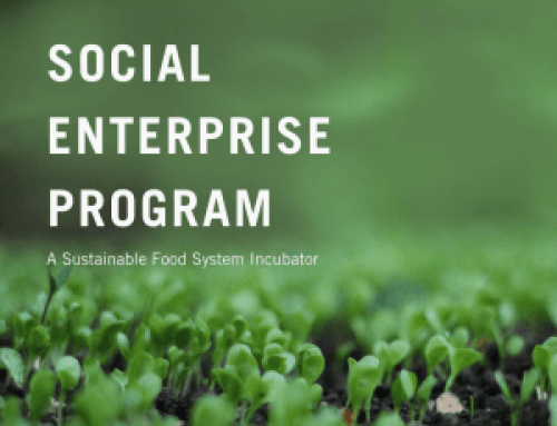 2020 Social Enterprise Cohort