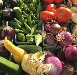 Produce from Restorative Farms