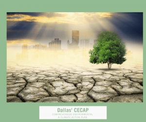 Dallas' CECAP