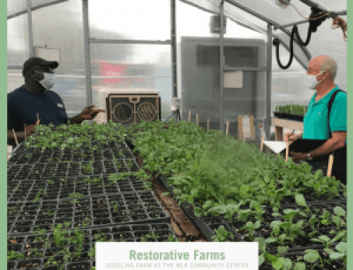 Restorative Farms, AHA Foodscape Innovation Finalist – Vote Now!