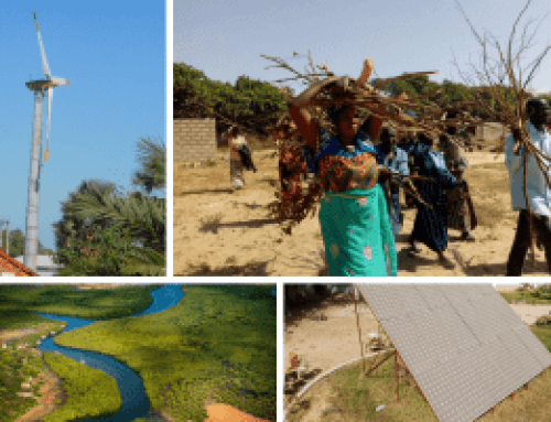 Innovation in Tintinto, The Gambia