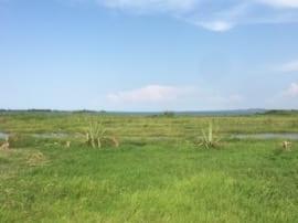 Land for the Rulegura Center
