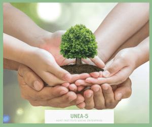 UNEA-5