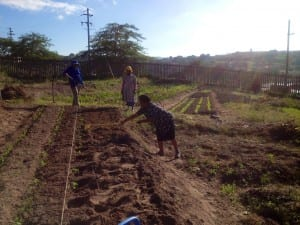 Maintaining vegetable gardens is part of Pinetown Methodist Church's Phakamisa ministry for caregivers of children with HIV-AIDS