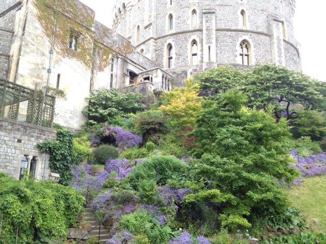 Windsor Castle grounds, 2014