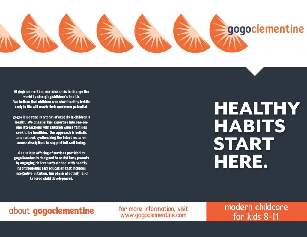 gogoC brochure_Page_2