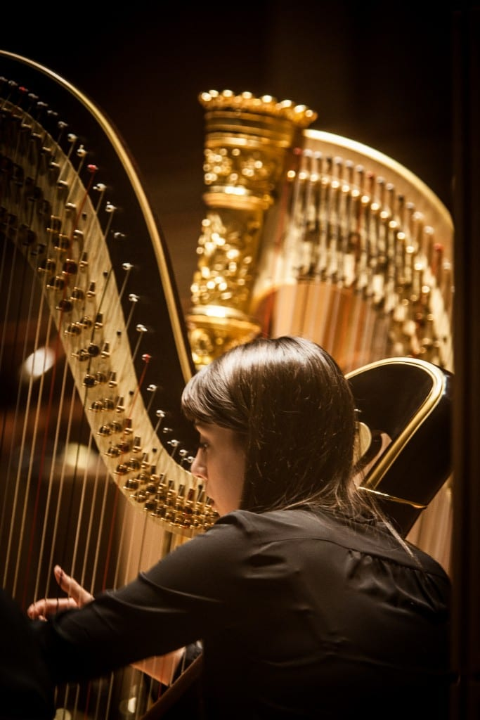 Harp, from the 2015 Meadows at the Meyerson (Photo by Kim Leeson)