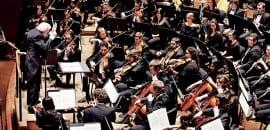Meadows Orchestra