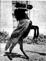 Peruna V, 1949, by Laughead