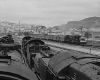 Bayshore yard filled with dead steamers waiting for the scrap heap, 1957, DeGolyer Library, SMU.