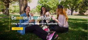 SMU website common connection campaign