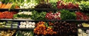 Johannes Bauer, SMU, organic diet, fruit flies