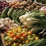 Johannes Bauer, SMU, fruit flies, organic diet