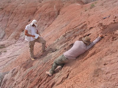 Morrison Formation, Jurassic, ancient soil, paleosols, climate, Myers, SMU