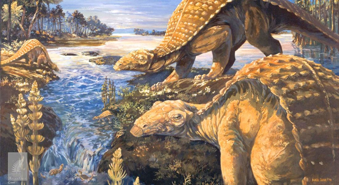 Early armored dino from Texas lacked cousin's club-tail weapon, but had a nose for danger