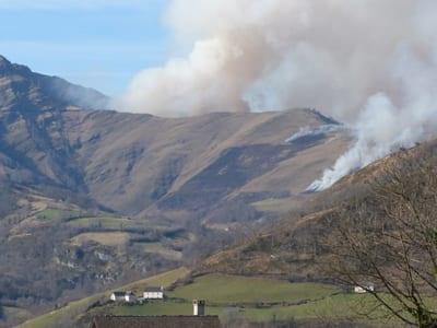 French Western Pyrenees, wildfire, SMU, Roos