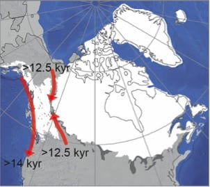 first Americans, North America, ice-ere corridor, DNA, Ice Age ... on younger dryas, prehistoric map of north america, late glacial maximum, ancient seas of north america, pleistocene ice age north america, glacial map of north america, snowball earth, little ice age, bering land bridge, cordilleran ice sheet, retreat of glaciers since 1850, glaciers covering north america, milankovitch cycles, laurentide ice sheet, ice coverage of north america, glaciers that swept over north america, ice age north america climate, post-glacial rebound, sea level rise map north america, quaternary glaciation, land bridge from asia to north america, ancient sea level map america, land bridge migration to north america, ice age glaciers north america, upper paleolithic, glacial period, last glacial period, glacier coverage north america, little ice age north america, ice sheet, migration route from europe to america, glaciers in north america, wisconsin glaciation, early migration to north america, ice age animals north america, ice age deer north america, medieval warm period,