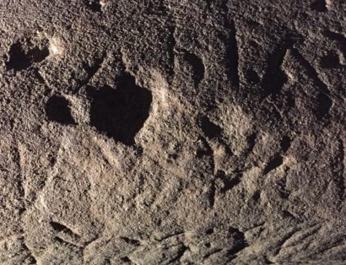 Live Science: Goddess's Name Inscribed in Lost Language on Ancient Tablet