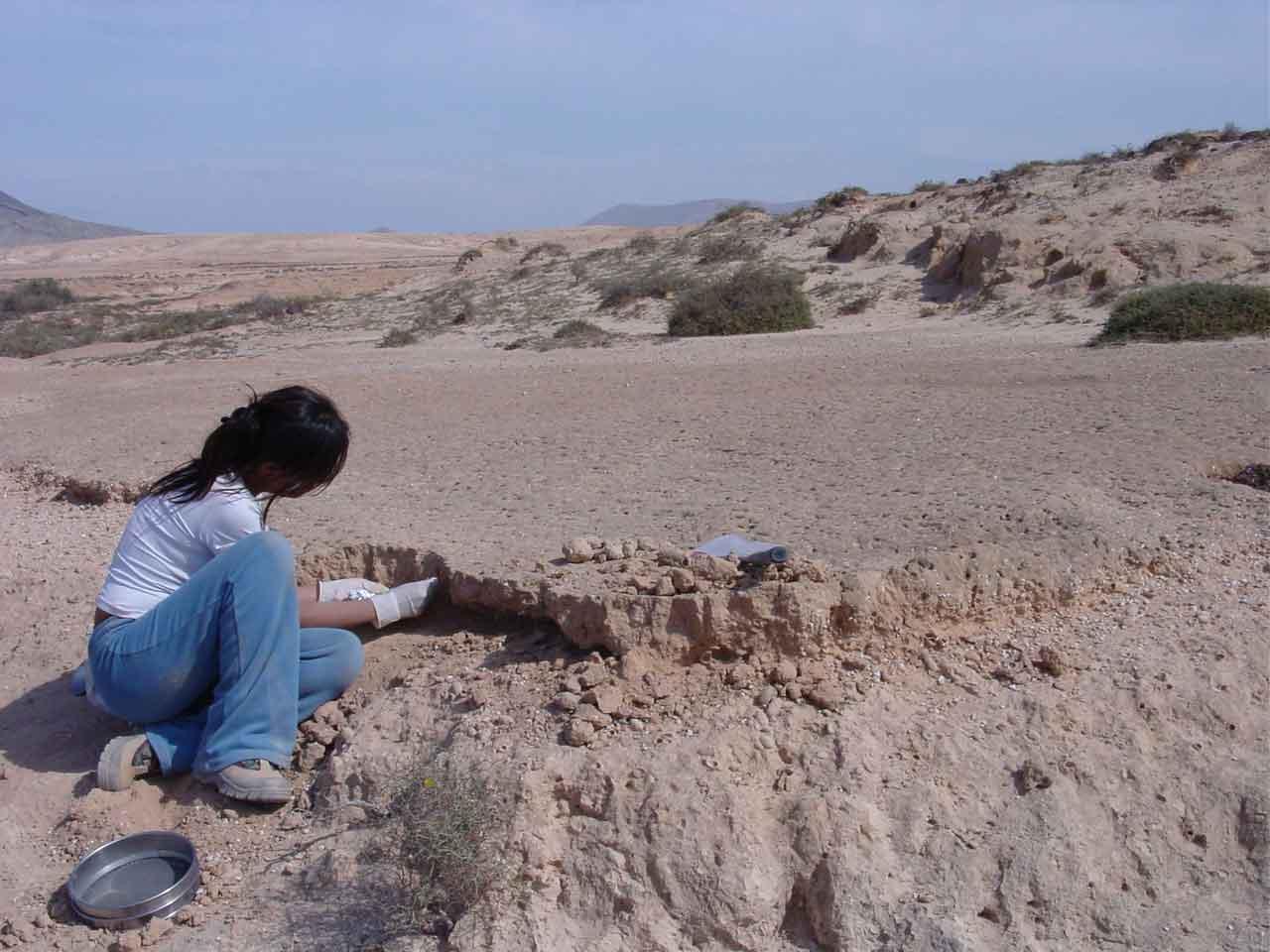 Yanes_field-_Fuerteventura-Island-lo-rez.jpg