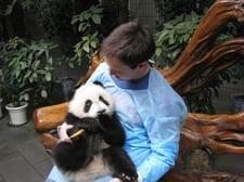 ben-panda.jpg
