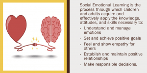 Social Emotional Learning graphic